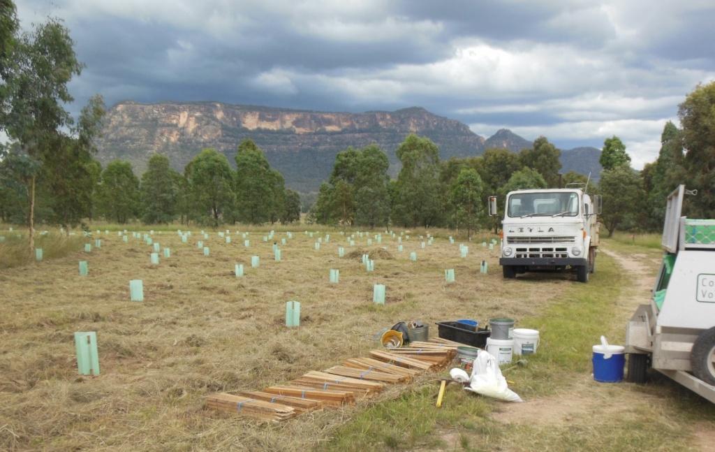 Conservation - habitat regeneration