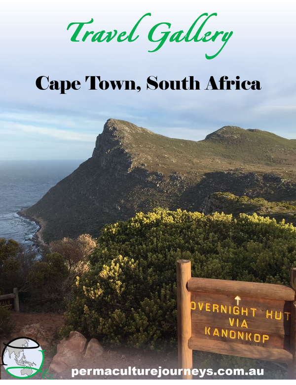 Travel Gallery: Cape Town, South Africa