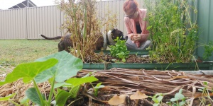 Permaculture In Action at: Anthony & Brittany's