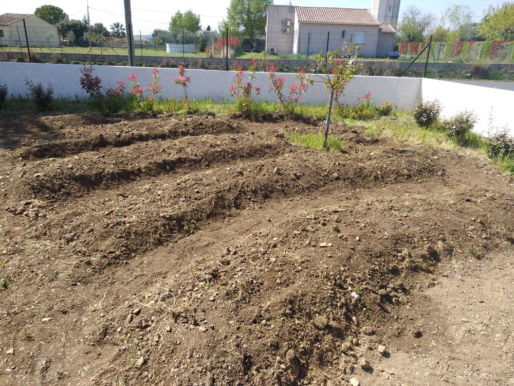 Forming the beds